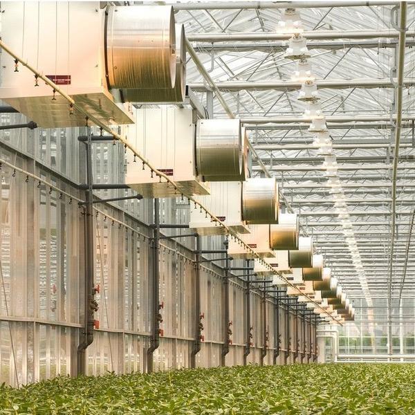 فن هایی که برای تهویه گلخانه استفاده می شوند سیست فن و پد گلخانه