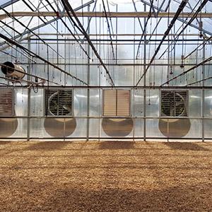 سیستم خنک کننده گلخانه خانگی ، قیمت سیستم خنک کننده گلخانه ، تهویه گلخانه خانگی ، کولر گلخانه ای ، پد های خنک کننده گلخانه ، تنظیم دمای گلخانه خانگی ، فوگر یا مه پاش ، توری سایبان گلخانه ، دریچه تهویه هوای گلخانه