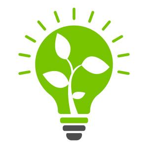 گیاهان در چه نوری بهتر رشد می کنند ؟!