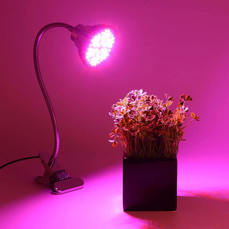 رنگ ال ای دی رشد گیاه