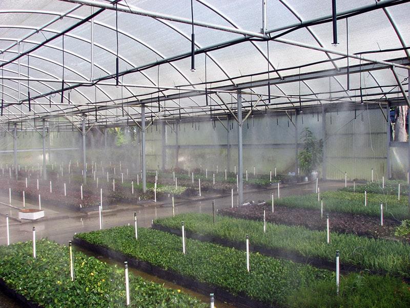 چیدمان نازل مه پاش و یا فوگر گلخانه ای