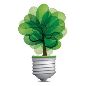 کدام لامپ برای رشد گیاه مناسب است