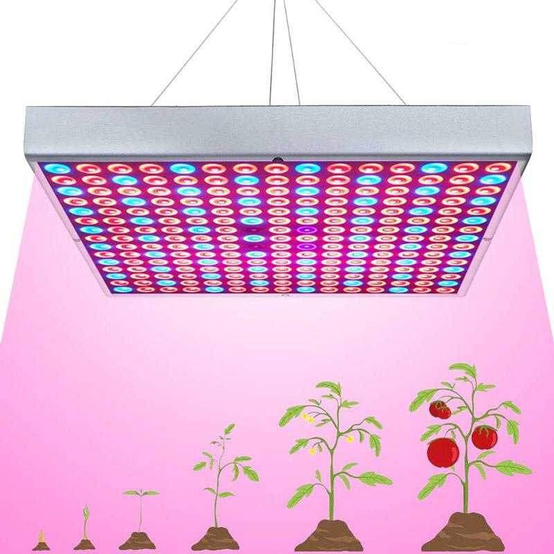 کدام ال ای دی رشد گیاه برای استفاده در گلخانه مناسب است