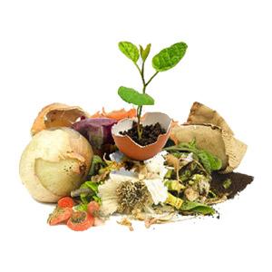 قیمت کود کمپوست تهیه شده از زباله و گیاهی