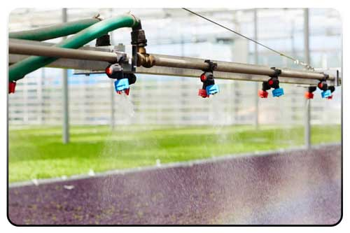 روند هوشمند سازی آبیاری گلخانه
