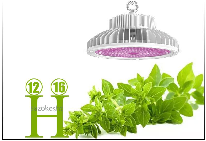 اتفاقاتی که با استفاده از ال ای دی رشد گیاهان در گلخانه رخ می دهد