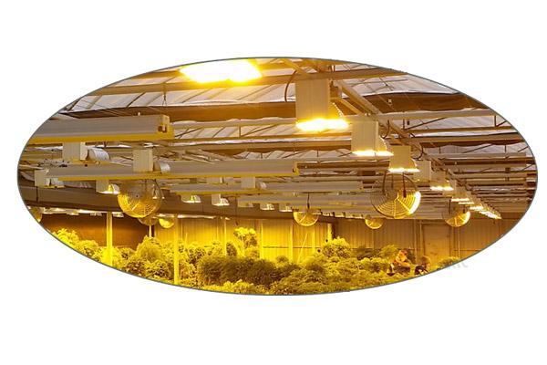 پیشرفت بزرگ در زمینه سیستم برق و روشنایی گلخانه